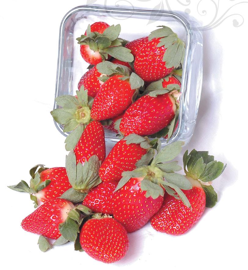 Продление сроков годности ягод
